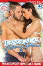 Transsexual Girlfriend Experience #8