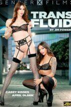 Trans Fluid